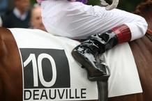 cheval_8_-_courses_c_jean_claude_boscher