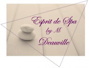 logo-esprit-de-spa-by-m-2017